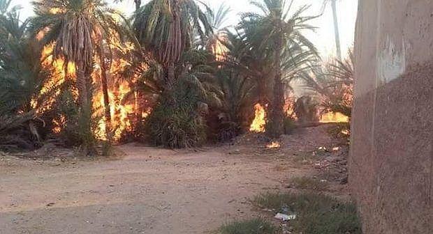 حريق مهول يلتهم أزيد من 100 نخلة بواحة تيغمرت ضواحي كلميم