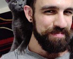 Un homme rencontre un chaton errant qui va complètement changer le cours de sa journée