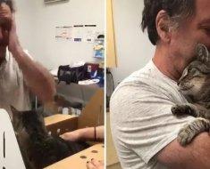 7 ans après sa disparition, cet homme retrouve son chat âgé de 19 ans
