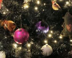 Un chat est caché dans ce sapin de Noël, saurez-vous le retrouver ?