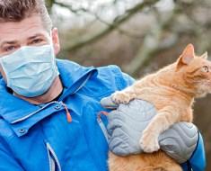 Ce nouveau « vaccin » peut vous empêcher d'être allergique aux chats