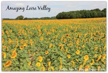 Explore Loire Valley
