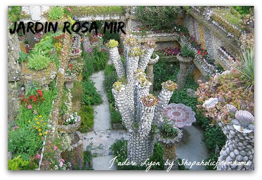 Rosa Mir Garden