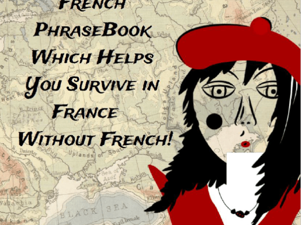 Your Mini French Phrasesbook