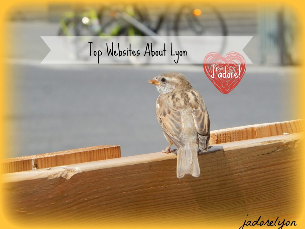 Top Websites About Lyon