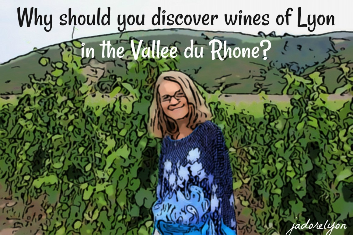 Why should you discover wines of Lyon in the Vallee du Rhone