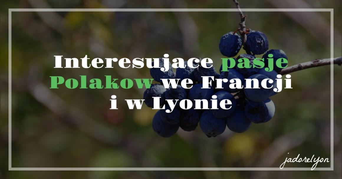 Interesujace pasje Polakow we Francji i w Lyoni
