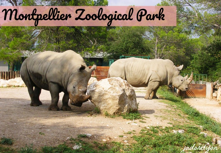 Montpellier Zoological Park(1)