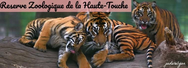 Reserve Zoologique de la Haute-Touche