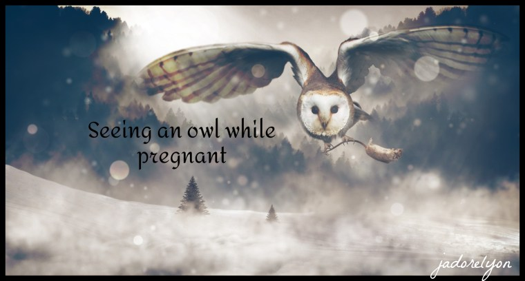 Seeing an owl while pregnant.
