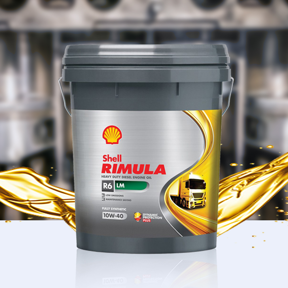 shell-rimula-r6