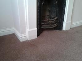 Carpet Details