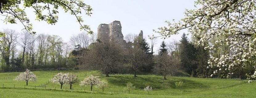 Ruine Pfeffingen – Blattenpass via @treierp