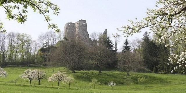 Ruine Pfeffingen - Blattenpass