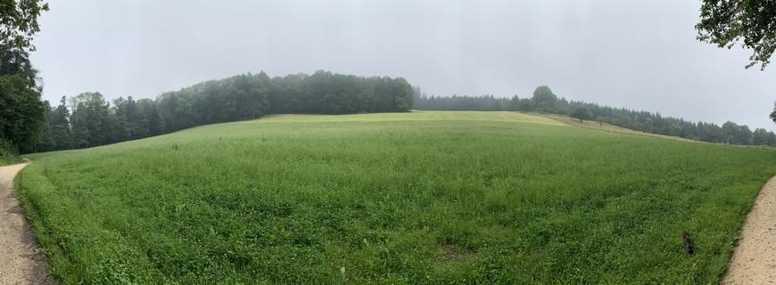 Spaziergang #1 – Chlini und Grossi Weid, Pfeffingen via @treierp