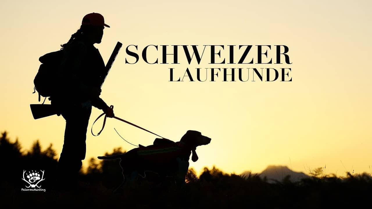 Schweizer Laufhunde – ein Kulturgut vor dem Aussterben… via @treierp