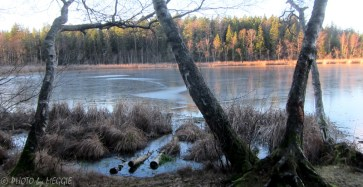 Gullsjön 2