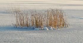 solig-vinterdag