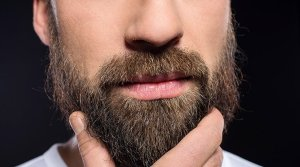facts-about-beard facts about beard