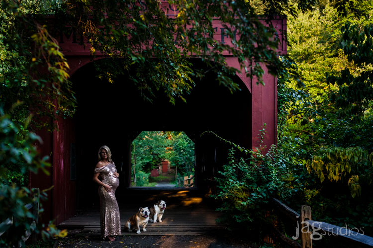 maternity-luxury-outdoors-dogs-portrait-jagstudios-photography-004