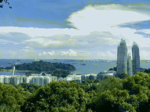 A view of the skyline, forest canopy, and the ocean.