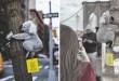 Des peluches de koalas à New York pour faire des dons pour l'Australie