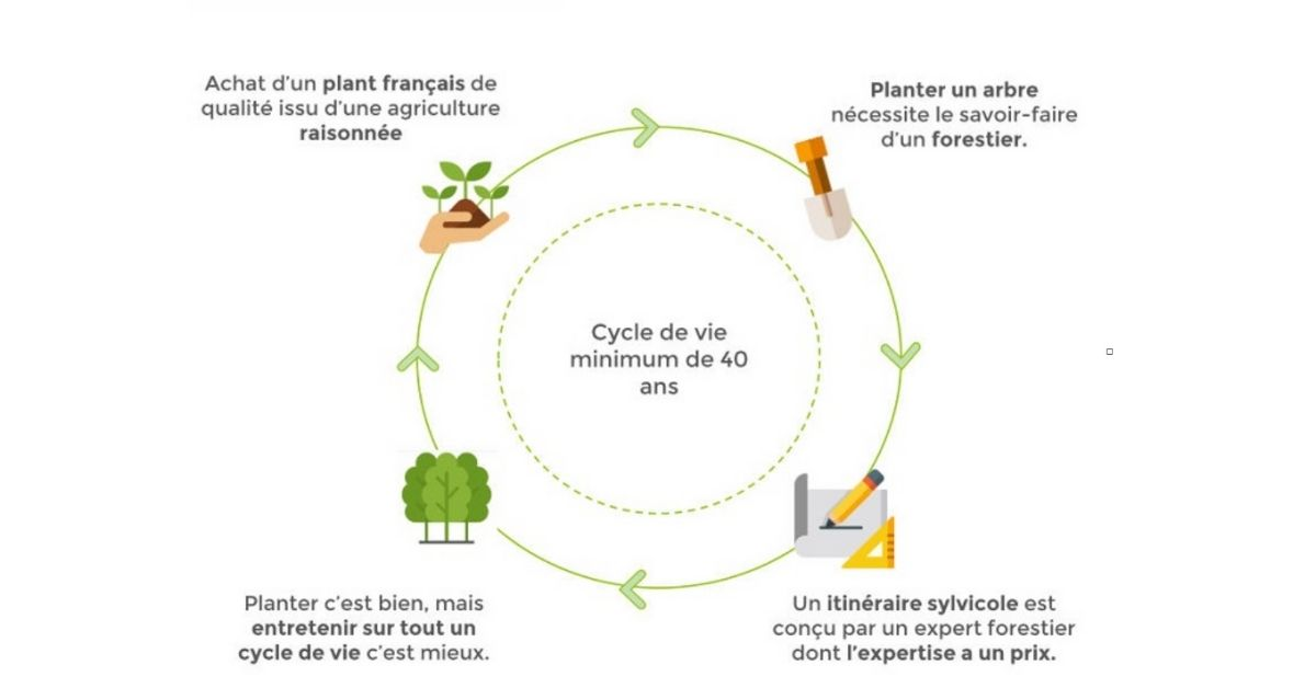 ecologie-streaming-co2