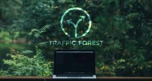TrafficForest, la nouvelle plateforme pour booster son SEO
