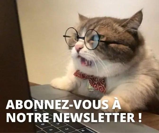 chat-newsletter