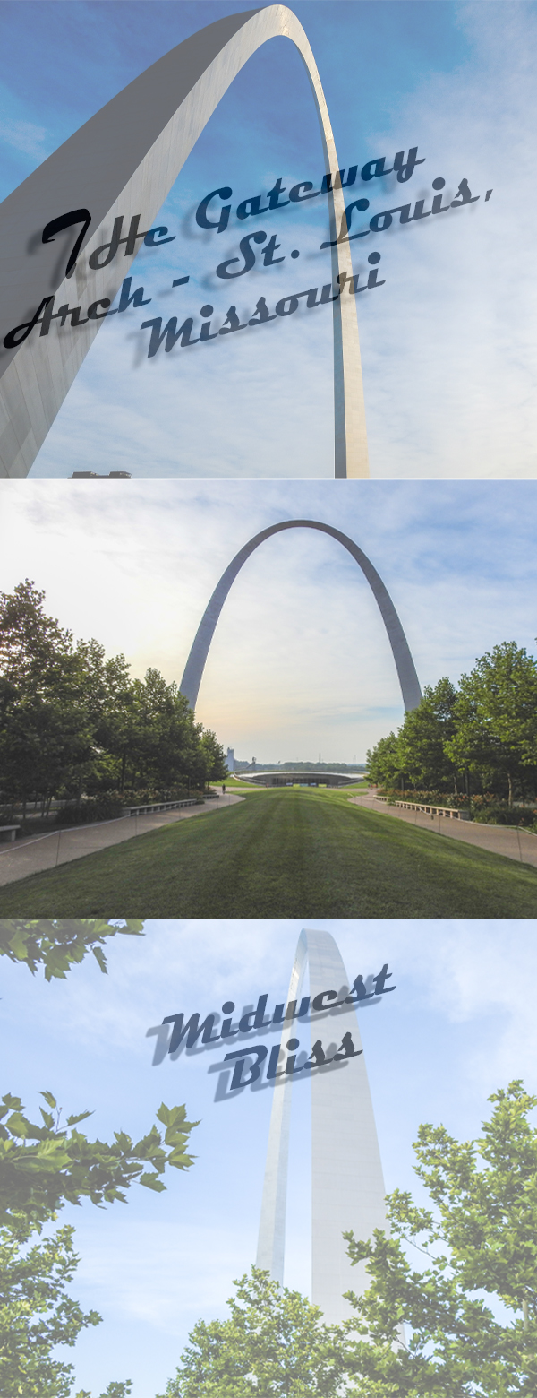 the gateway arch pin
