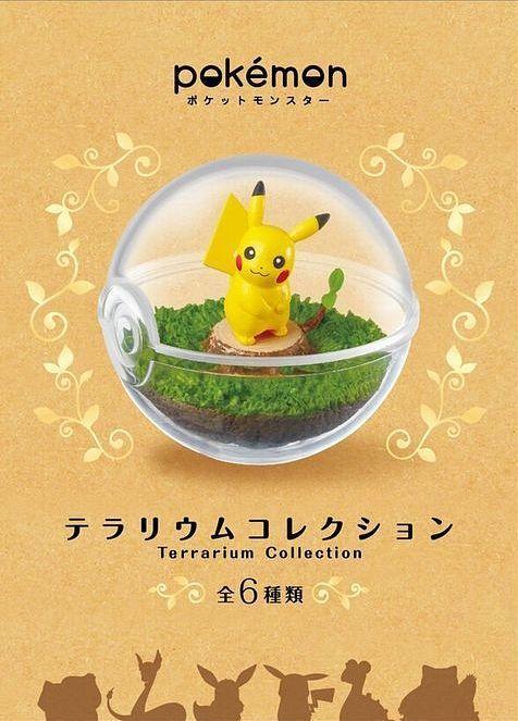 terrariums pokemon
