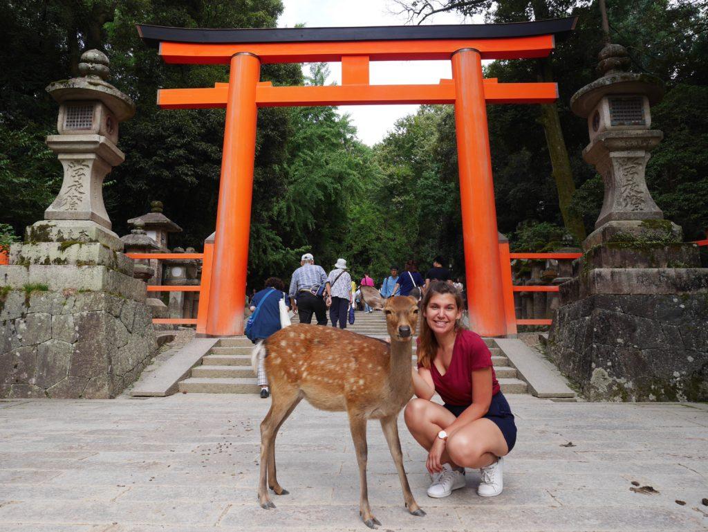 blog-nara-japon