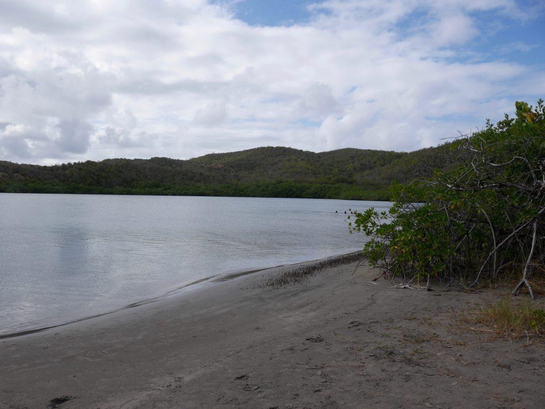 Baie-du-trésor-Martinique