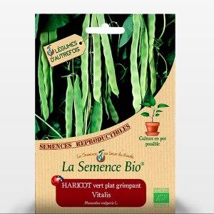 Haricot vitalis plat - les sachet de graines Bio pour les semis au potager - 059