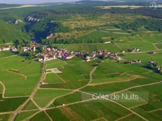 Le vignoble de Bourgogne vu du ciel