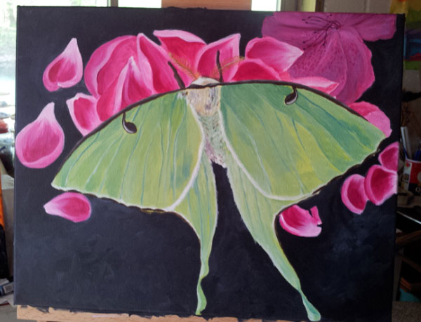 Luna Moth painting still a work in progress