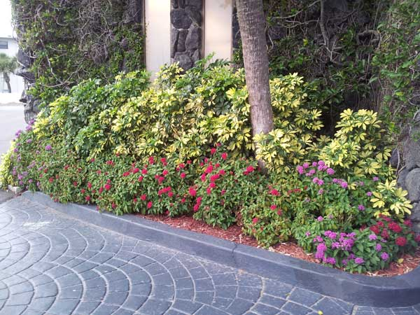 front landscaping of condo