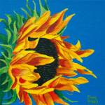 Original yellow and orange sunflower with cerulean blue sky background