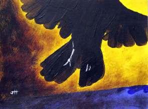 black crow taking off blue beach umbrella