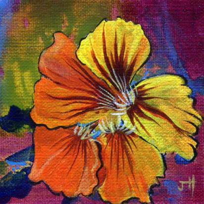 Little Beauty - Nasturtium flower painting
