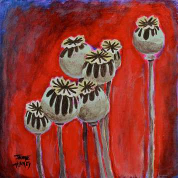 shadows falling on top of dry poppy pods with vivid textured background