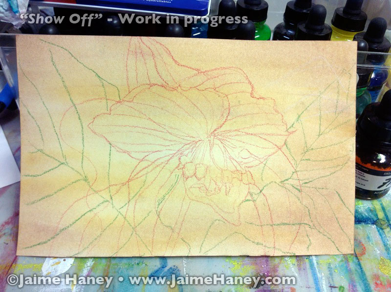 initial sketch of Black Bat Flower