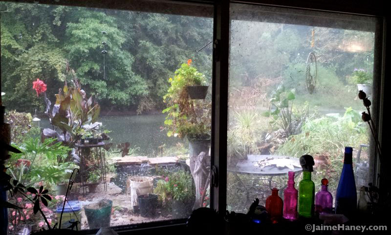 View looking to the right from my art studio window