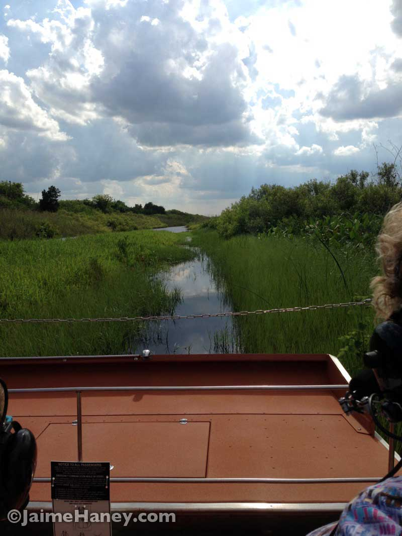 view from my airboat seat