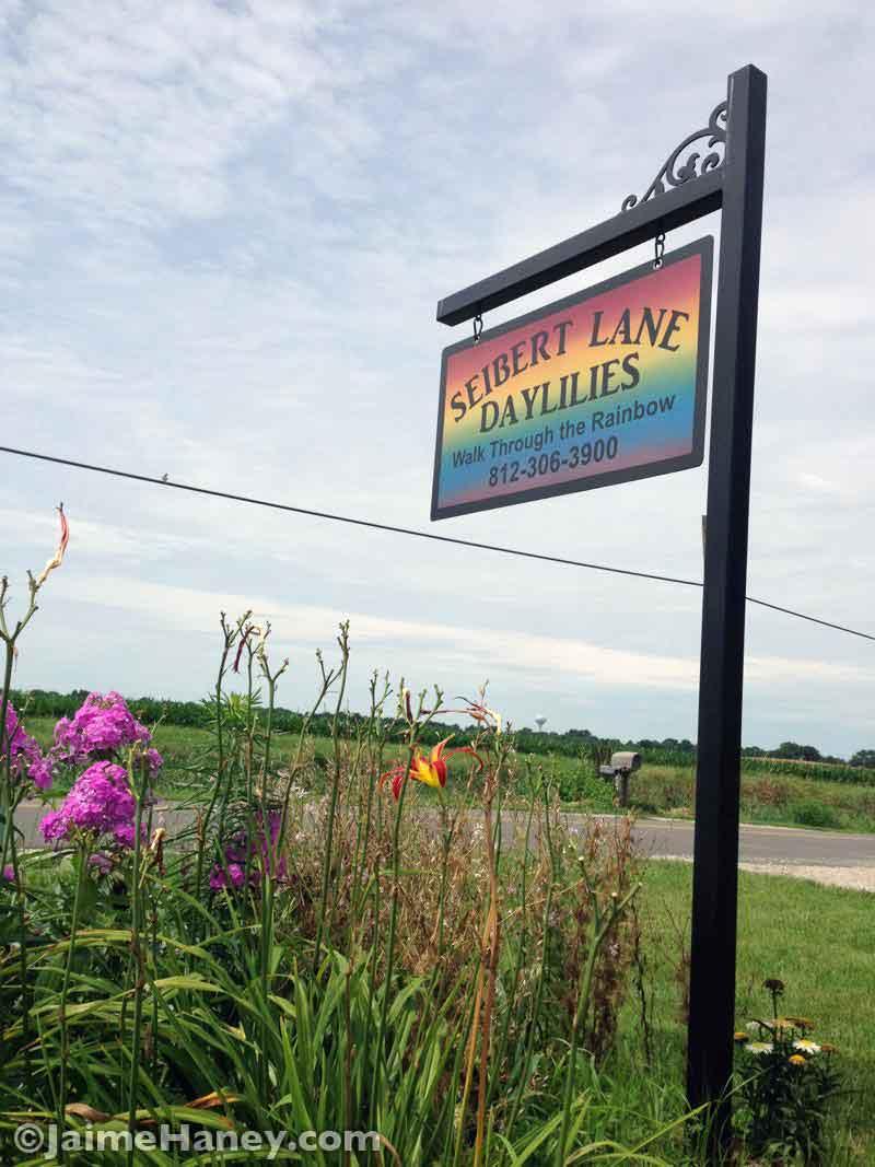 Seibert Lane Daylilies sign