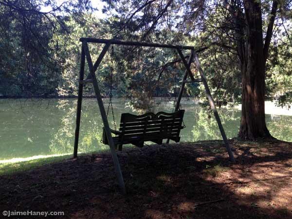 peaceful swing facing lake