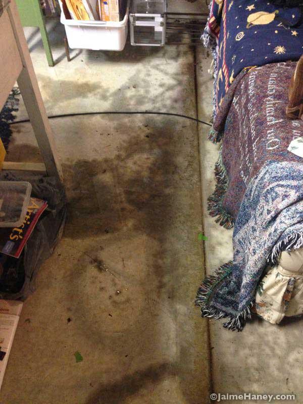 wet floor of my art studio