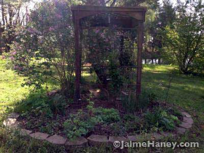 My swing garden - home of the Jose lilac