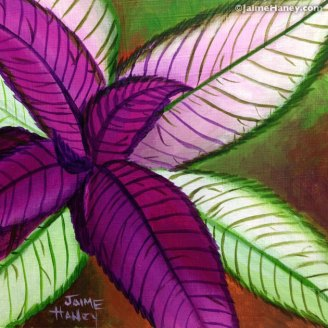 Persian Shield plant painting