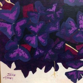 Purple oxalis plant painting